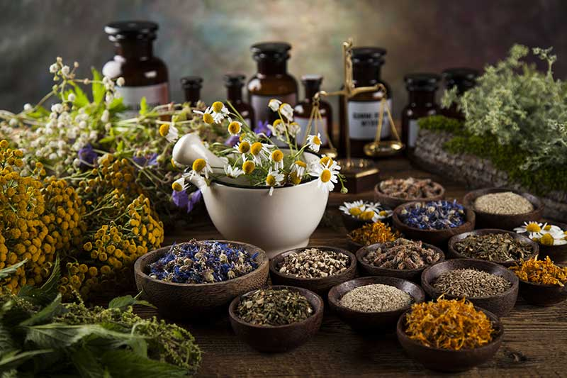 What Are Adaptogens | Ana Heart Blog