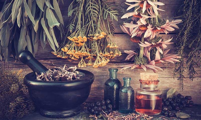 Herbs for Mental Clarity and Energy | Ana Heart Blog