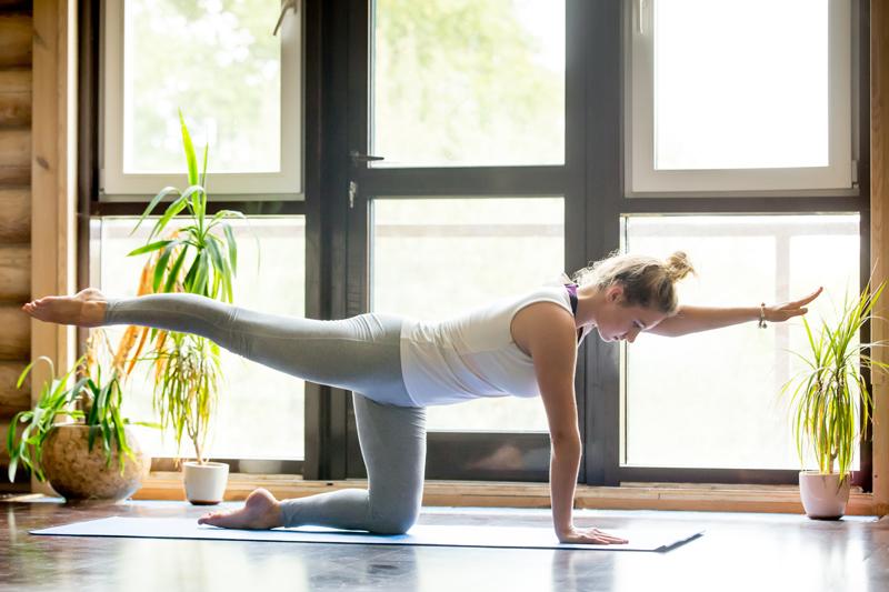 Yoga Svaaropa